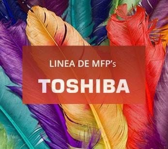 linea-toshiba