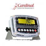 Indicadores-Cardinal-190-Storm