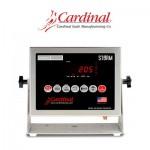 indicadores-cardinal-205-Storm